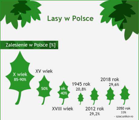 Lasy w Polsce infografika